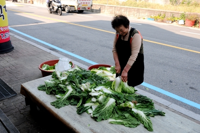 Kimchi Produktion