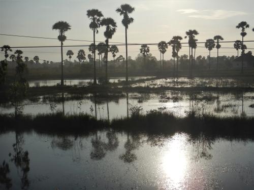Morgendliche Landschaft nördlich von Kampot